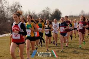 Campionati regionali Novi 2017 06