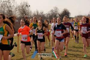 campionati regionali novi 2017