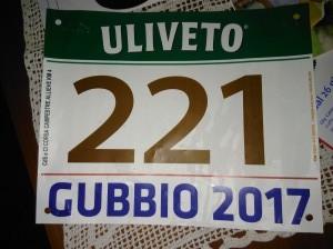 gubbio camp italiani  atletica ponzano 466